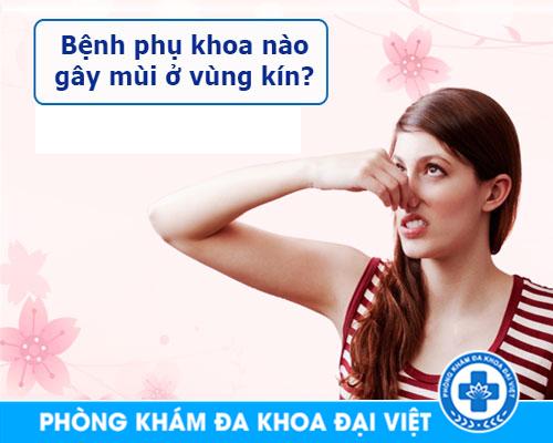 cac-benh-viem-phu-khoa-gay-mui-vung-kin-775