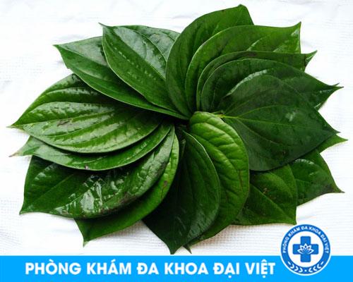 dieu-tri-viem-am-dao-bang-la-trau-khong-co-khoi-khong-2237